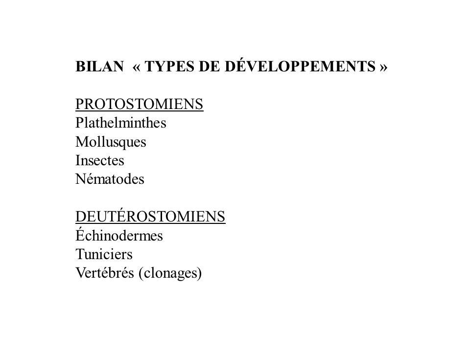 BILAN « TYPES DE DÉVELOPPEMENTS »