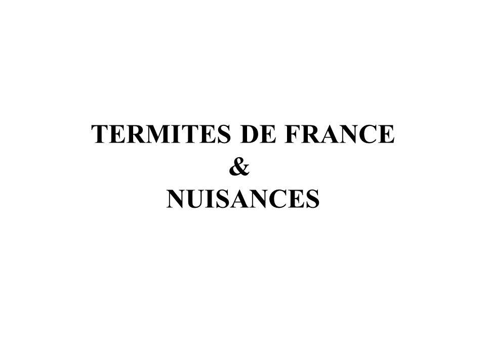 TERMITES DE FRANCE & NUISANCES