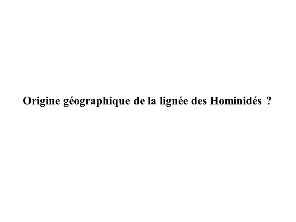 Origine géographique de la lignée des Hominidés
