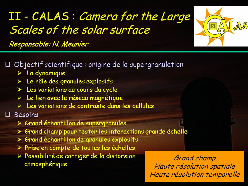 II - CALAS : Camera for the Large Scales of the solar surface