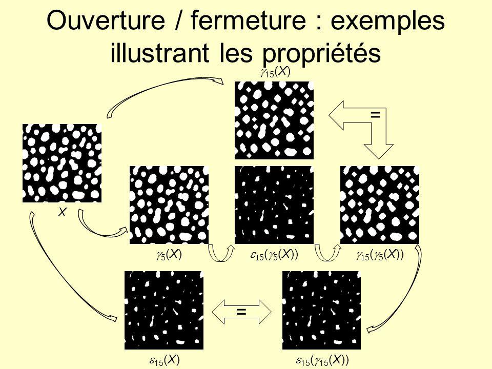 Ouverture / fermeture : exemples illustrant les propriétés