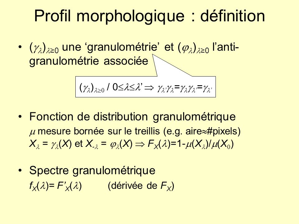 Profil morphologique : définition