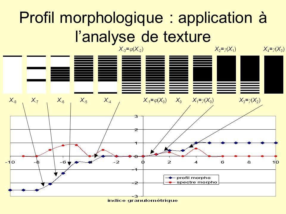 Profil morphologique : application à l'analyse de texture
