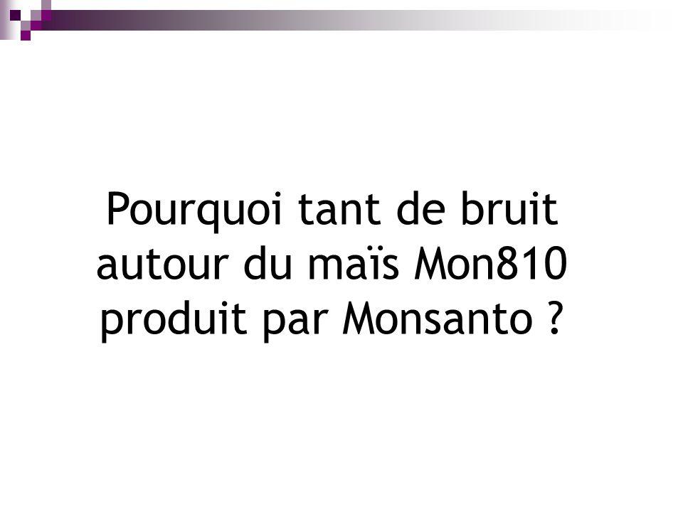 Pourquoi tant de bruit autour du maïs Mon810 produit par Monsanto