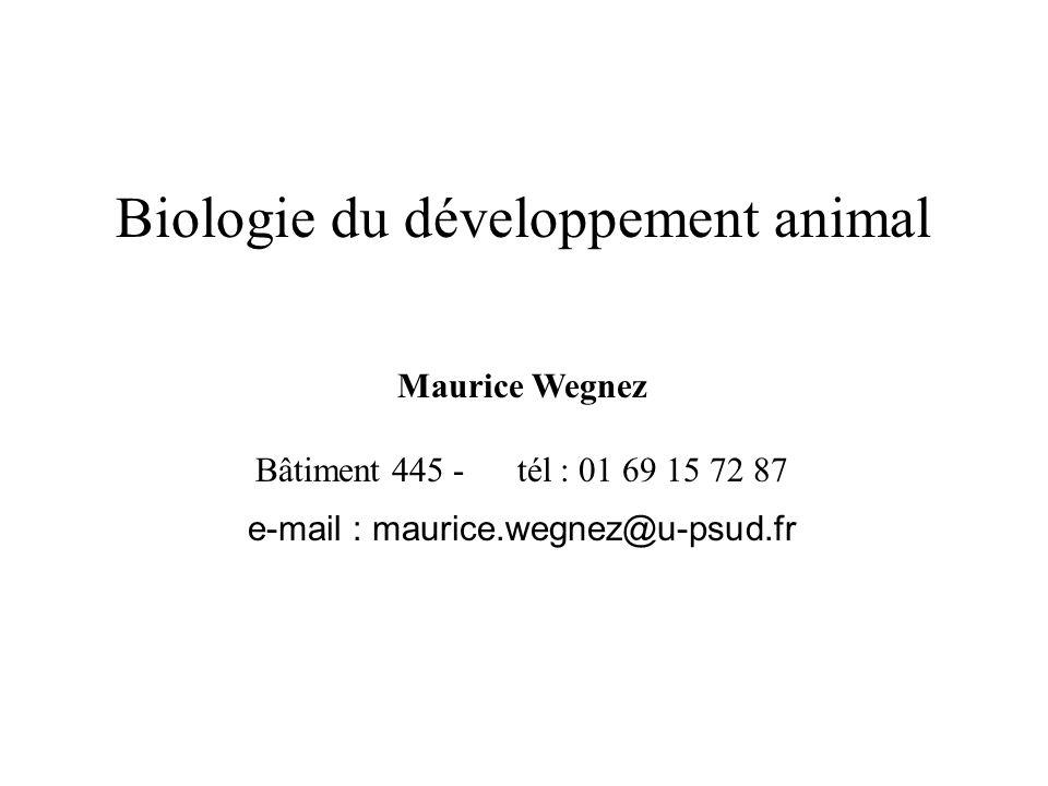 e-mail : maurice.wegnez@u-psud.fr