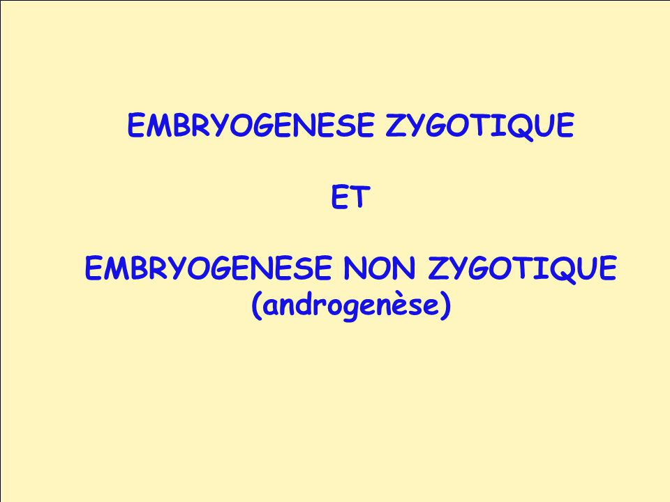 EMBRYOGENESE ZYGOTIQUE EMBRYOGENESE NON ZYGOTIQUE