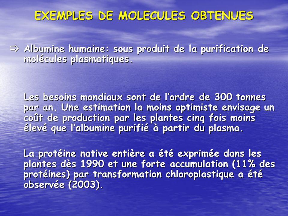 EXEMPLES DE MOLECULES OBTENUES