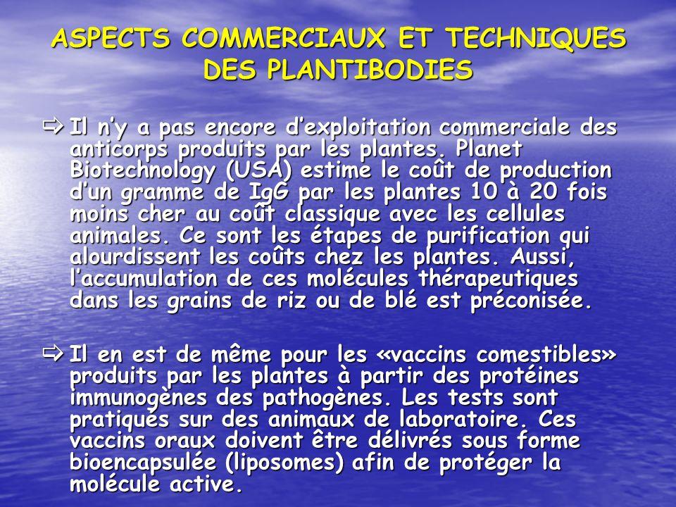 ASPECTS COMMERCIAUX ET TECHNIQUES DES PLANTIBODIES