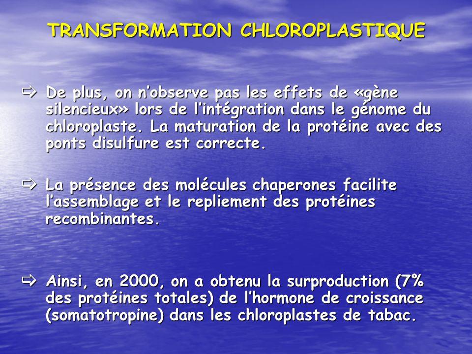 TRANSFORMATION CHLOROPLASTIQUE