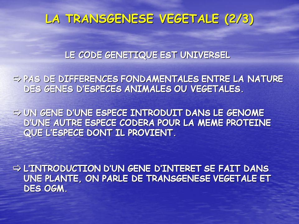 LA TRANSGENESE VEGETALE (2/3)