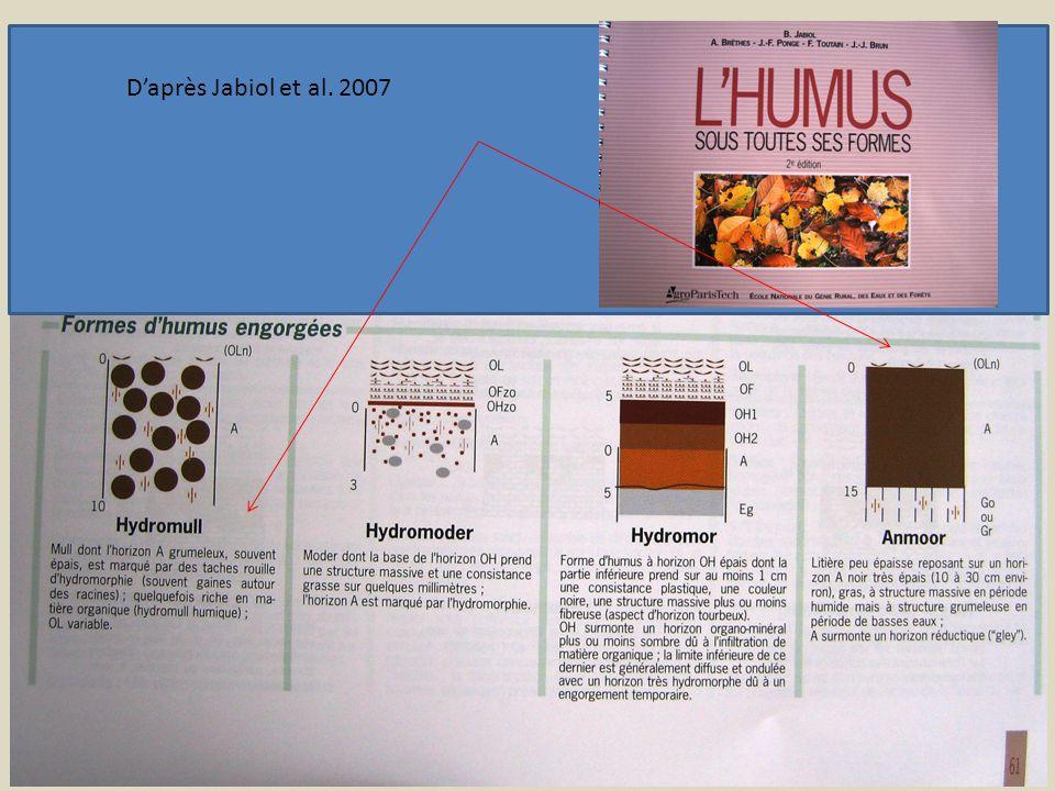 D'après Jabiol et al. 2007