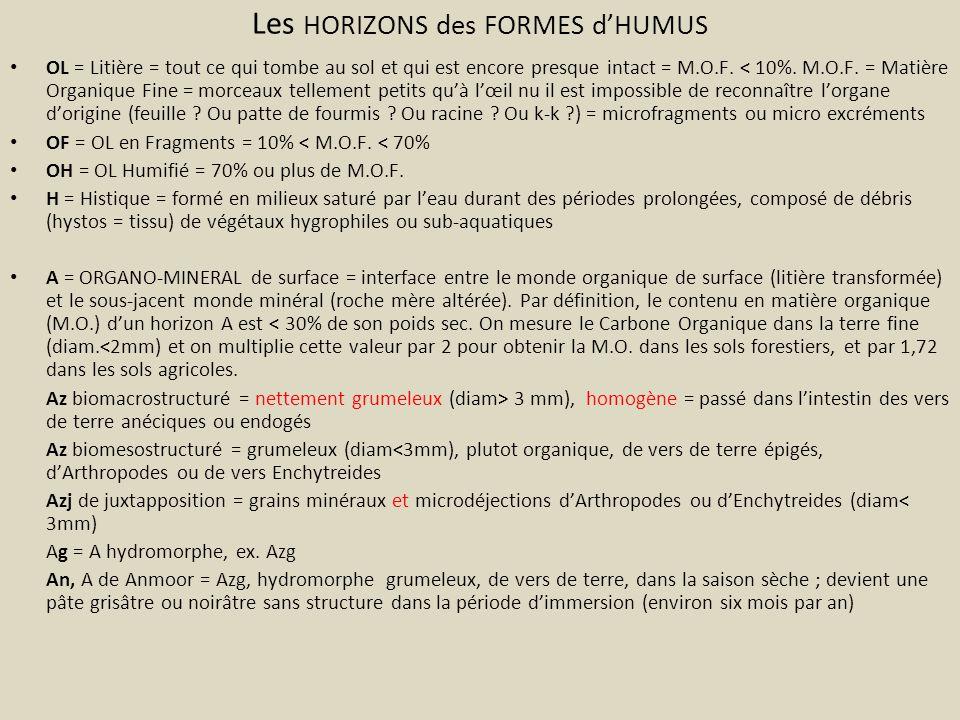Les HORIZONS des FORMES d'HUMUS