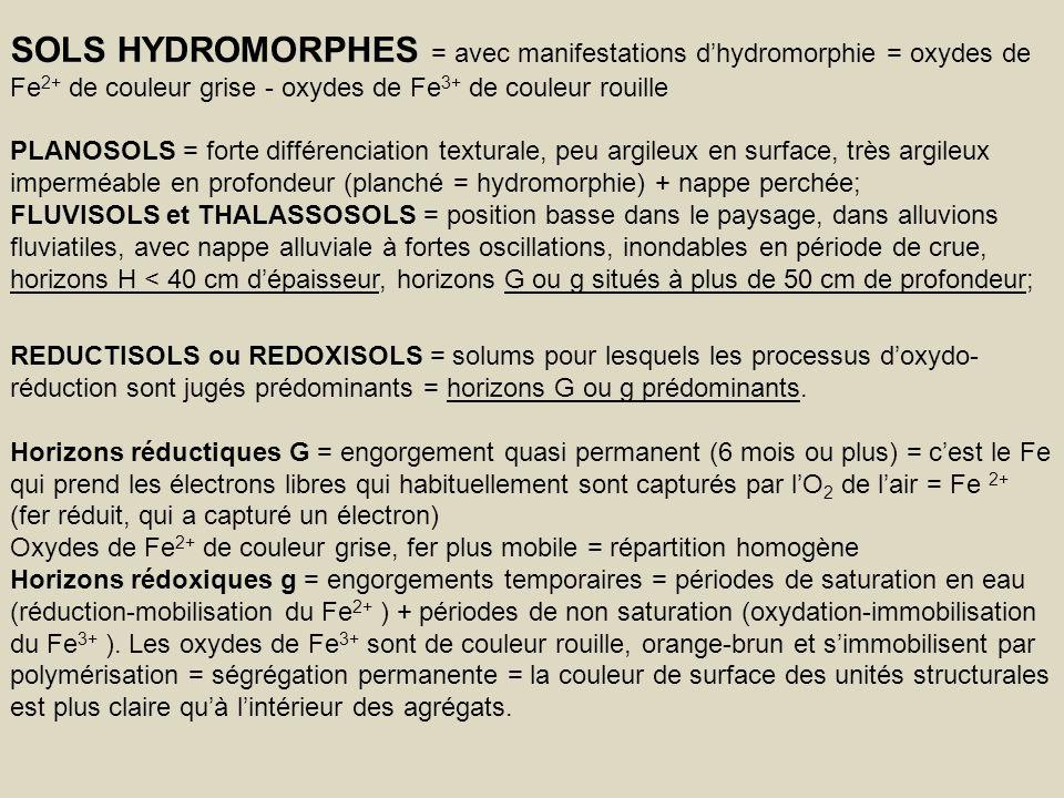 SOLS HYDROMORPHES = avec manifestations d'hydromorphie = oxydes de Fe2+ de couleur grise - oxydes de Fe3+ de couleur rouille