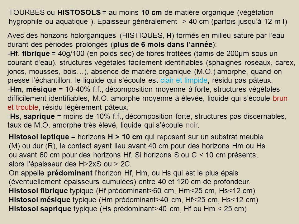 TOURBES ou HISTOSOLS = au moins 10 cm de matière organique (végétation hygrophile ou aquatique ). Epaisseur généralement > 40 cm (parfois jusqu'à 12 m !)