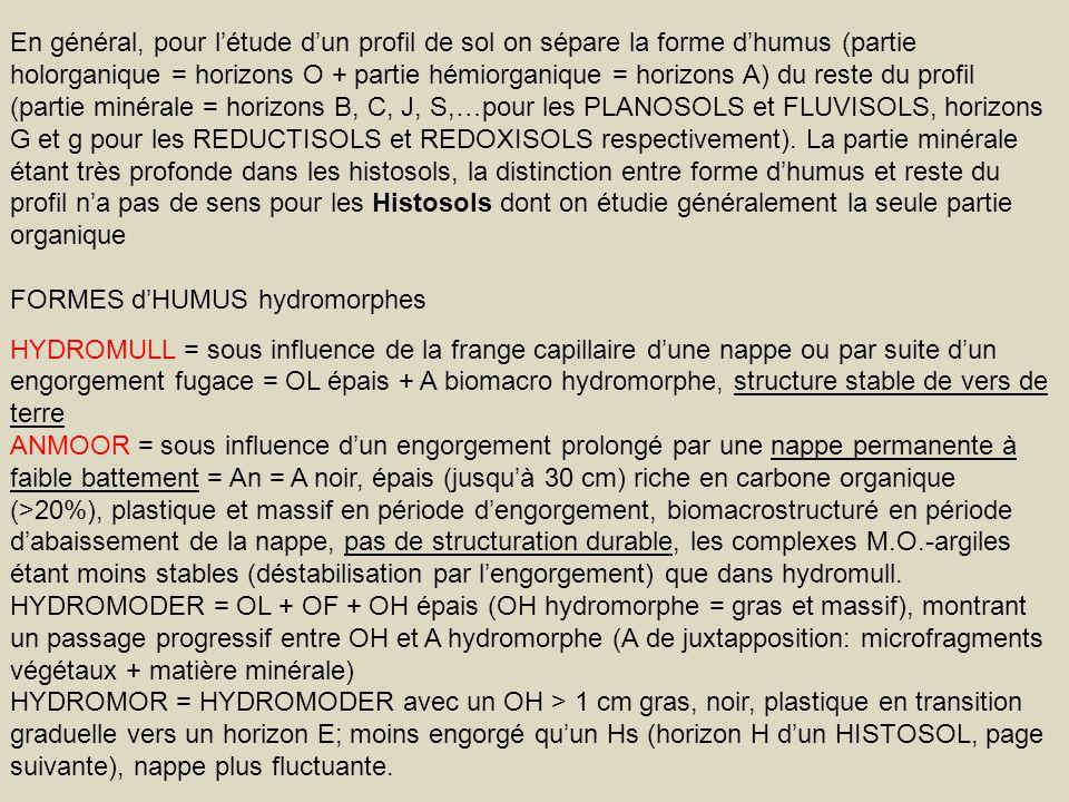 En général, pour l'étude d'un profil de sol on sépare la forme d'humus (partie holorganique = horizons O + partie hémiorganique = horizons A) du reste du profil (partie minérale = horizons B, C, J, S,…pour les PLANOSOLS et FLUVISOLS, horizons G et g pour les REDUCTISOLS et REDOXISOLS respectivement). La partie minérale étant très profonde dans les histosols, la distinction entre forme d'humus et reste du profil n'a pas de sens pour les Histosols dont on étudie généralement la seule partie organique