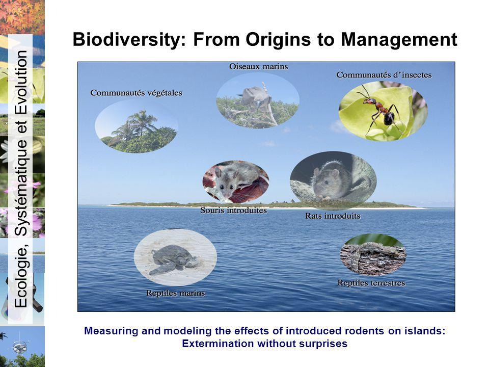 Biodiversity: From Origins to Management