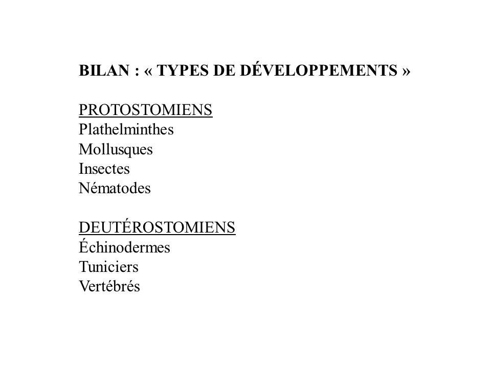 BILAN : « TYPES DE DÉVELOPPEMENTS »
