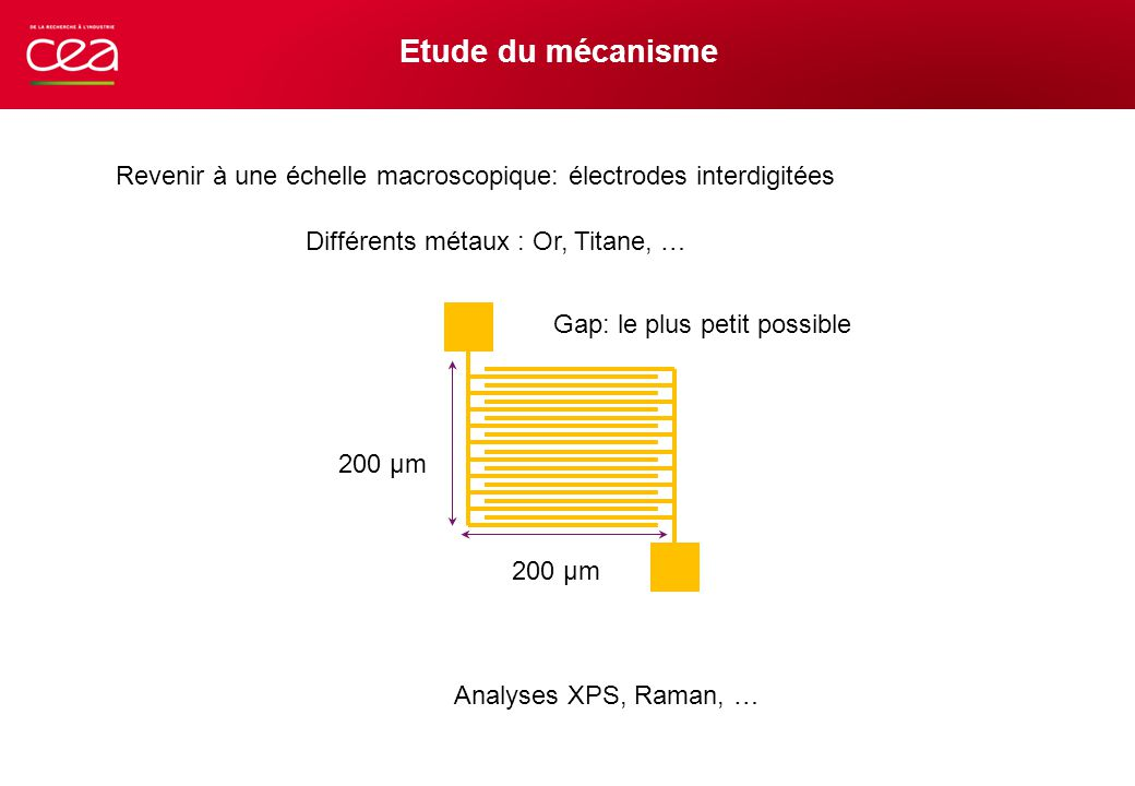Etude du mécanisme Revenir à une échelle macroscopique: électrodes interdigitées. Différents métaux : Or, Titane, …