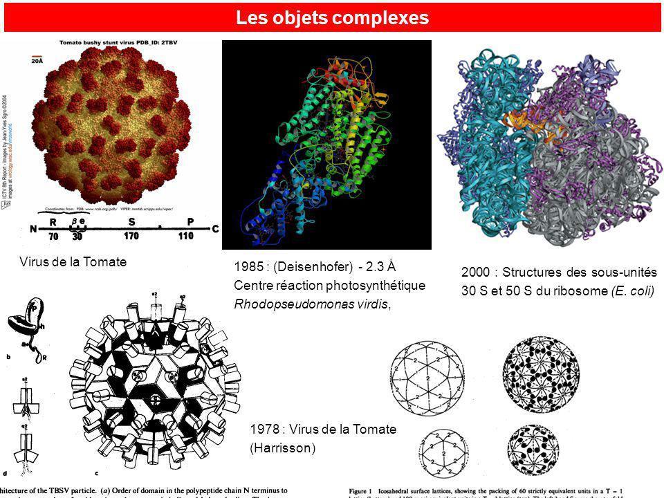 Les objets complexes Virus de la Tomate 1985 : (Deisenhofer) - 2.3 Å
