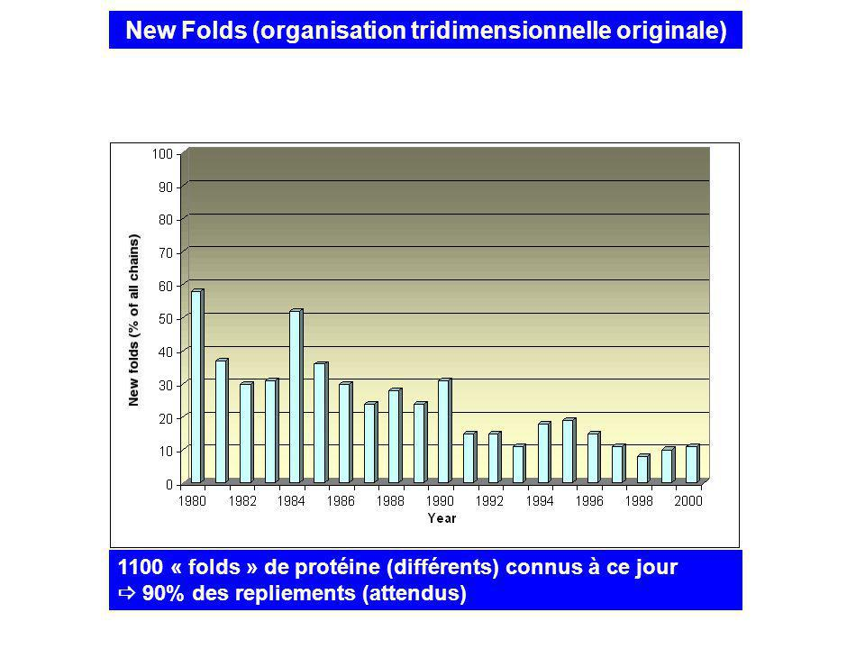 New Folds (organisation tridimensionnelle originale)
