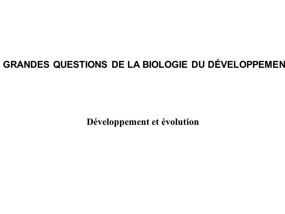 Développement et évolution