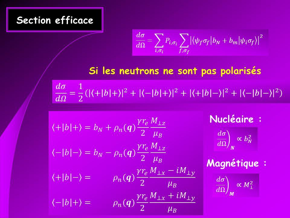 Si les neutrons ne sont pas polarisés