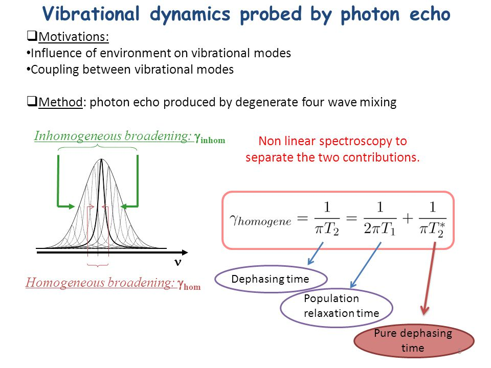 Vibrational dynamics probed by photon echo