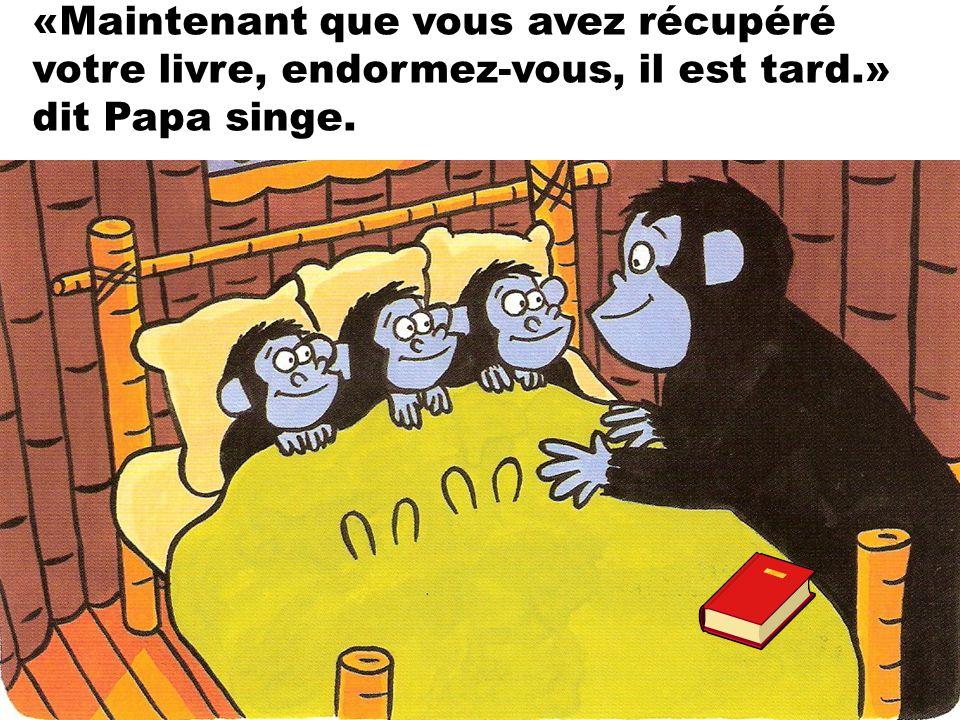 «Maintenant que vous avez récupéré votre livre, endormez-vous, il est tard.» dit Papa singe.