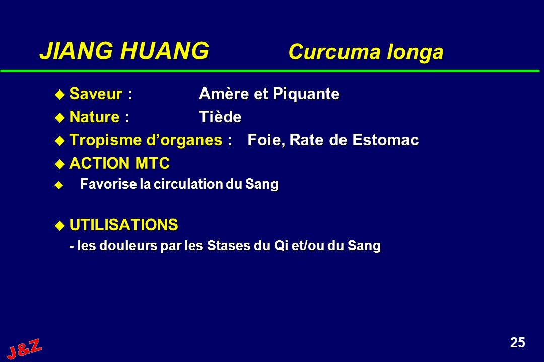 JIANG HUANG Curcuma longa