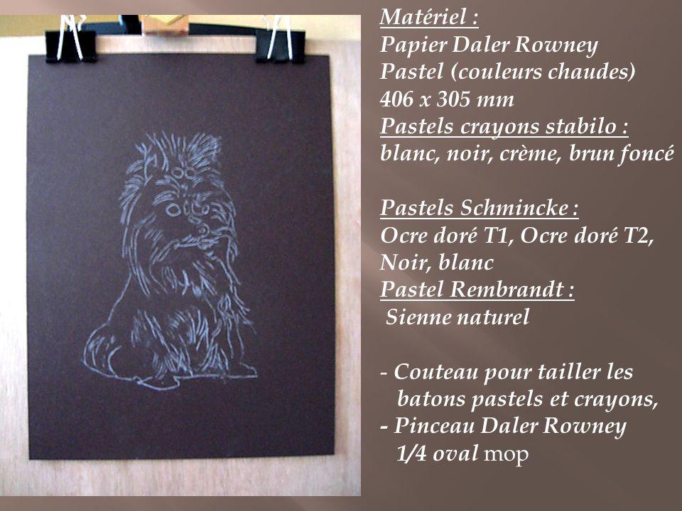 Matériel : Papier Daler Rowney. Pastel (couleurs chaudes) 406 x 305 mm. Pastels crayons stabilo : blanc, noir, crème, brun foncé.