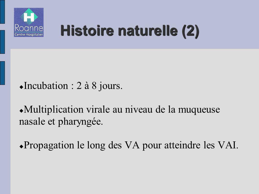 Histoire naturelle (2)