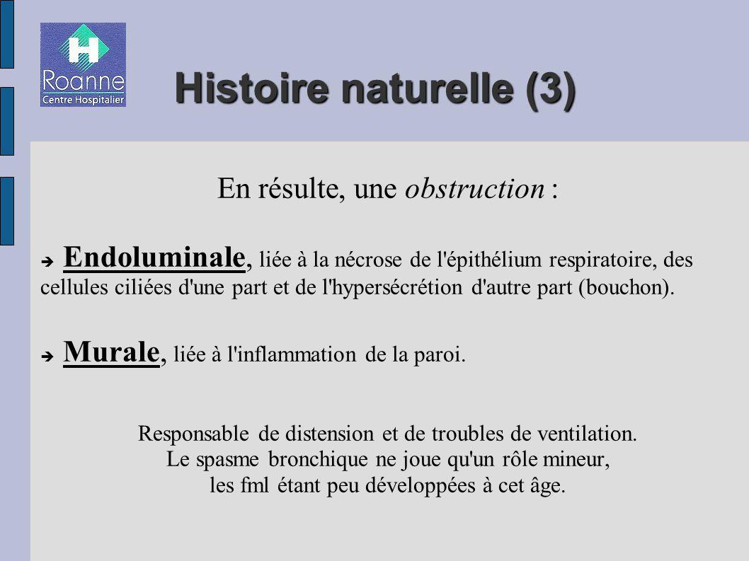 Histoire naturelle (3)