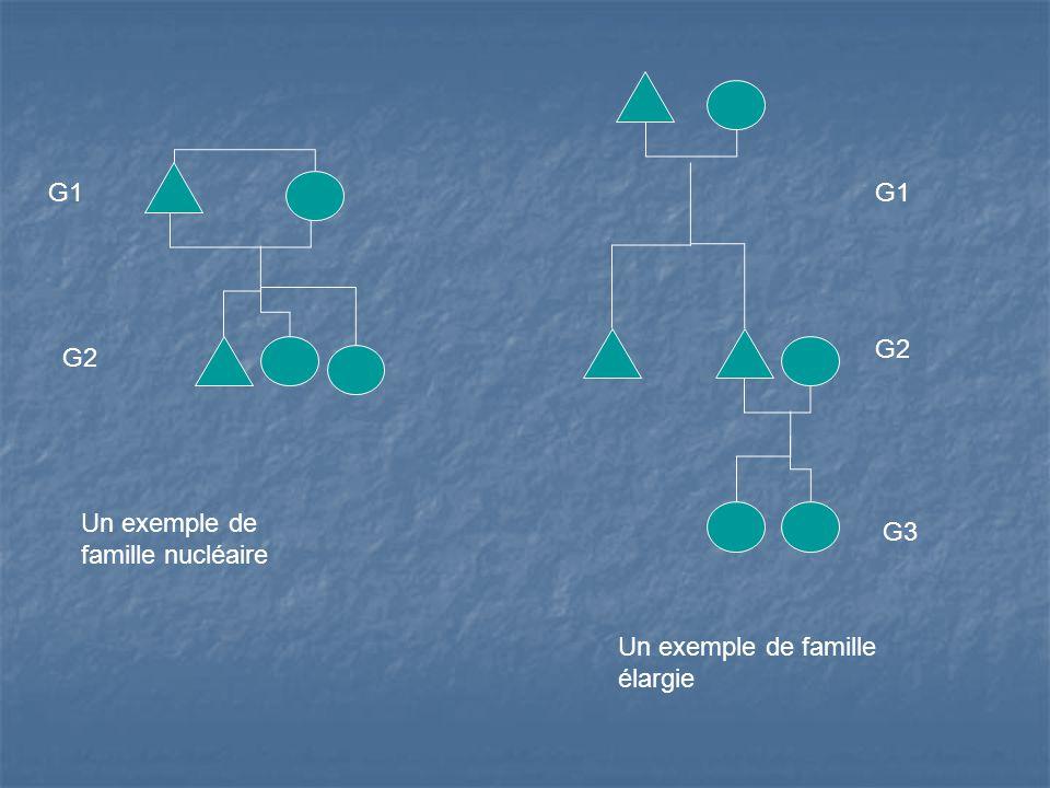 G1 G1 G2 G2 Un exemple de famille nucléaire G3 Un exemple de famille élargie