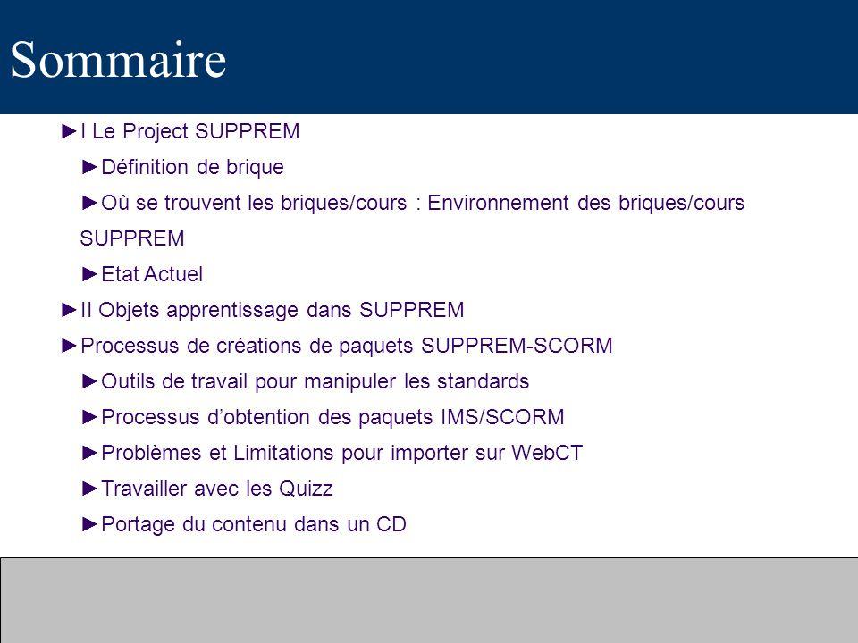 Sommaire I Le Project SUPPREM Définition de brique