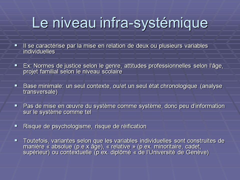 Le niveau infra-systémique