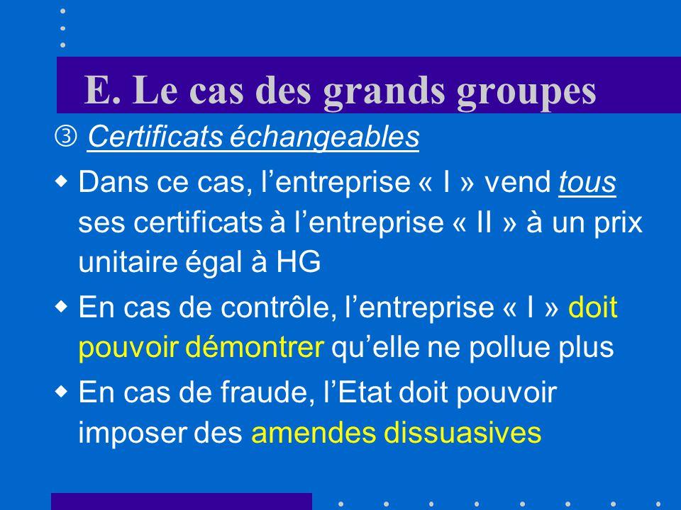 E. Le cas des grands groupes