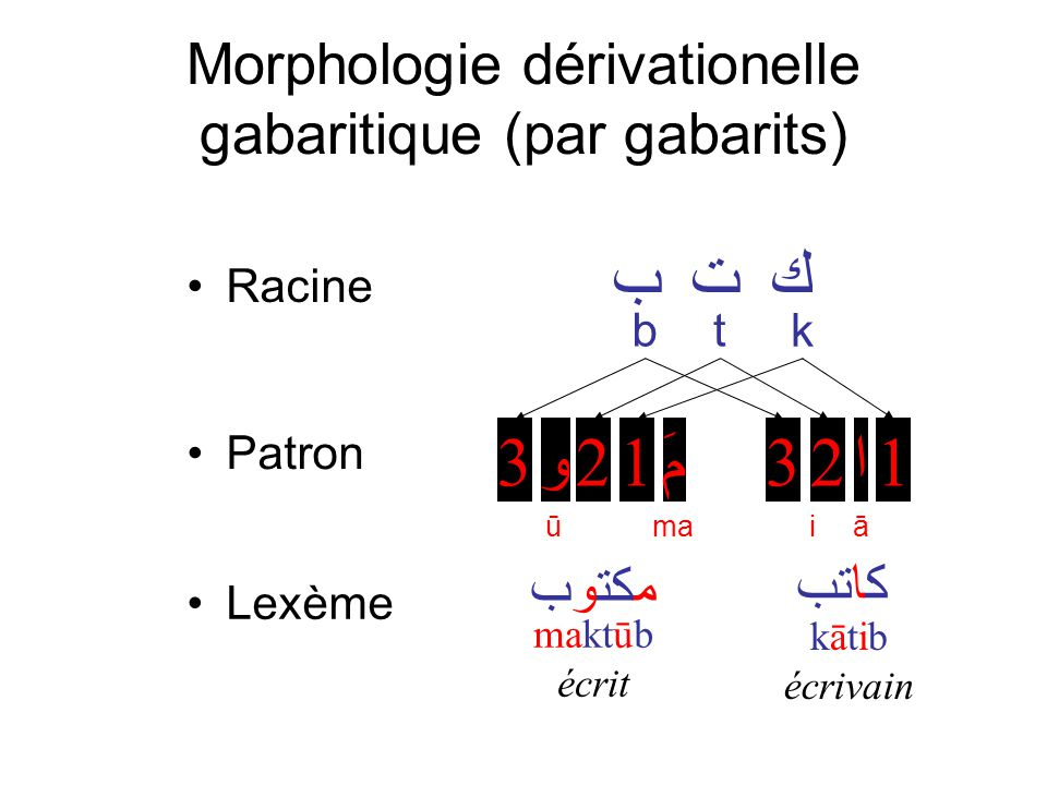 Morphologie dérivationelle gabaritique (par gabarits)