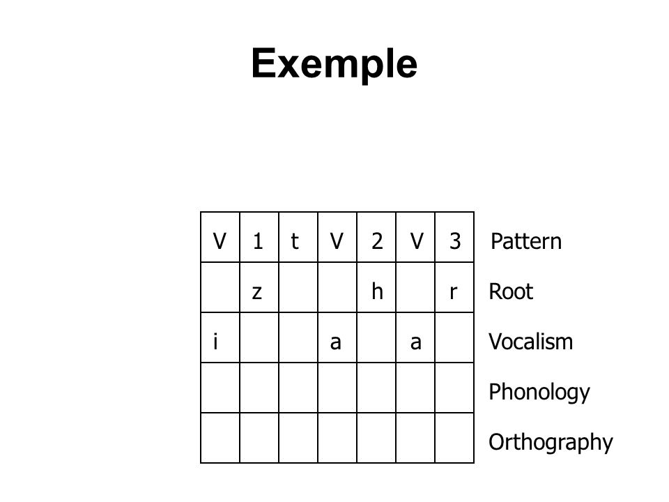 Exemple V 1 t 2 3 Pattern z h r Root i a Vocalism Phonology