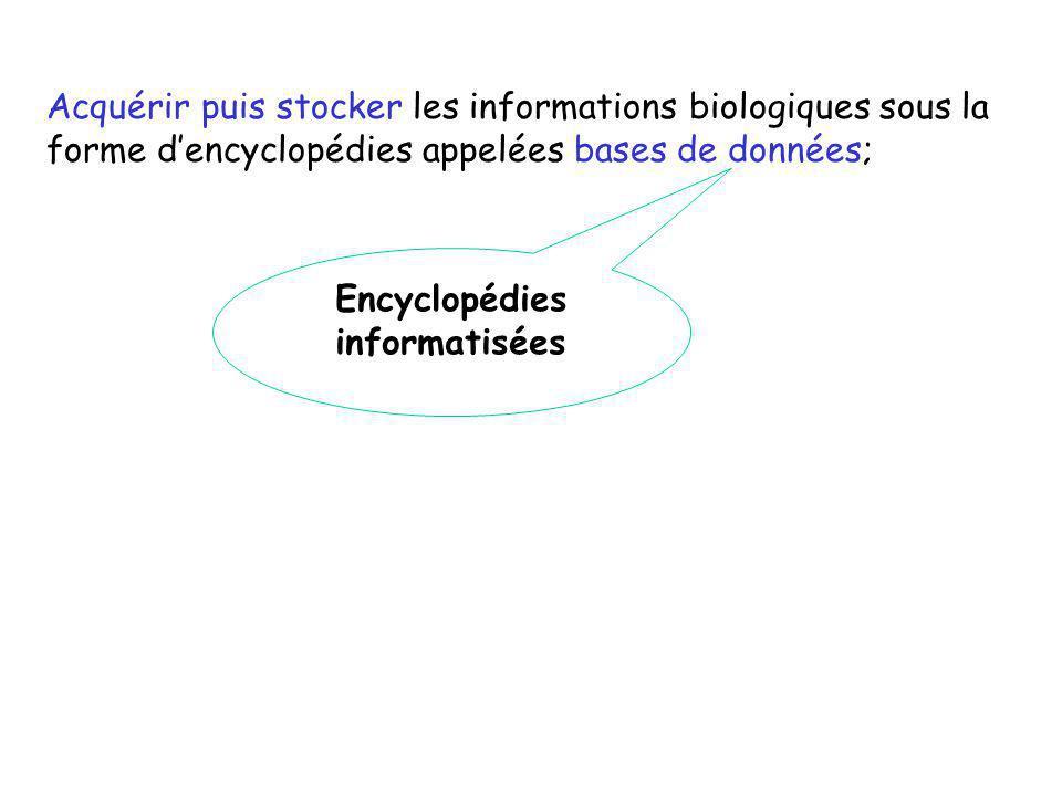 Encyclopédies informatisées