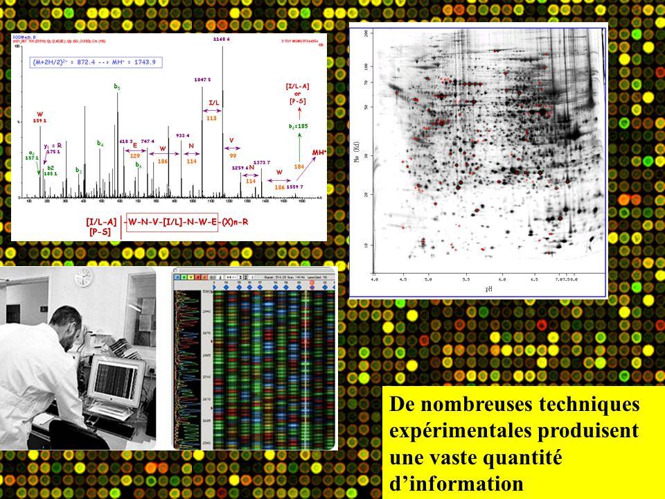 De nombreuses techniques expérimentales produisent une vaste quantité d'information
