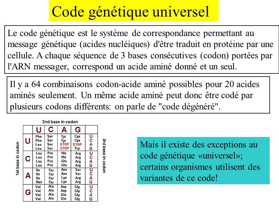 Code génétique universel