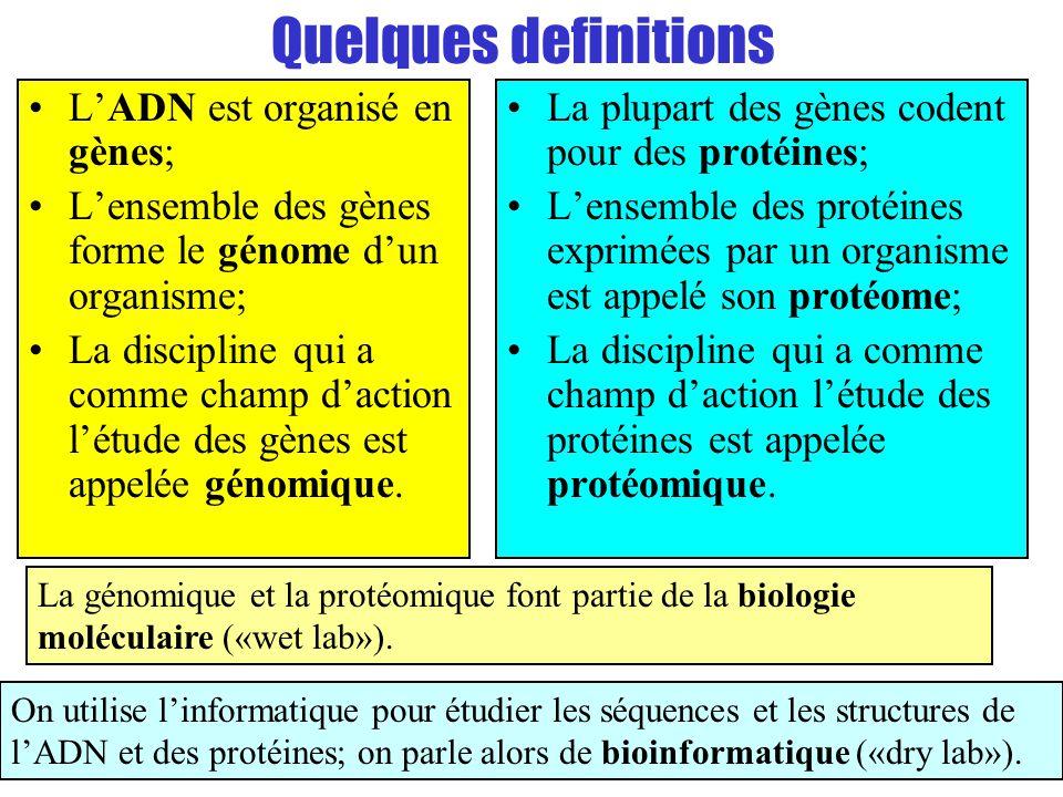 Quelques definitions L'ADN est organisé en gènes;