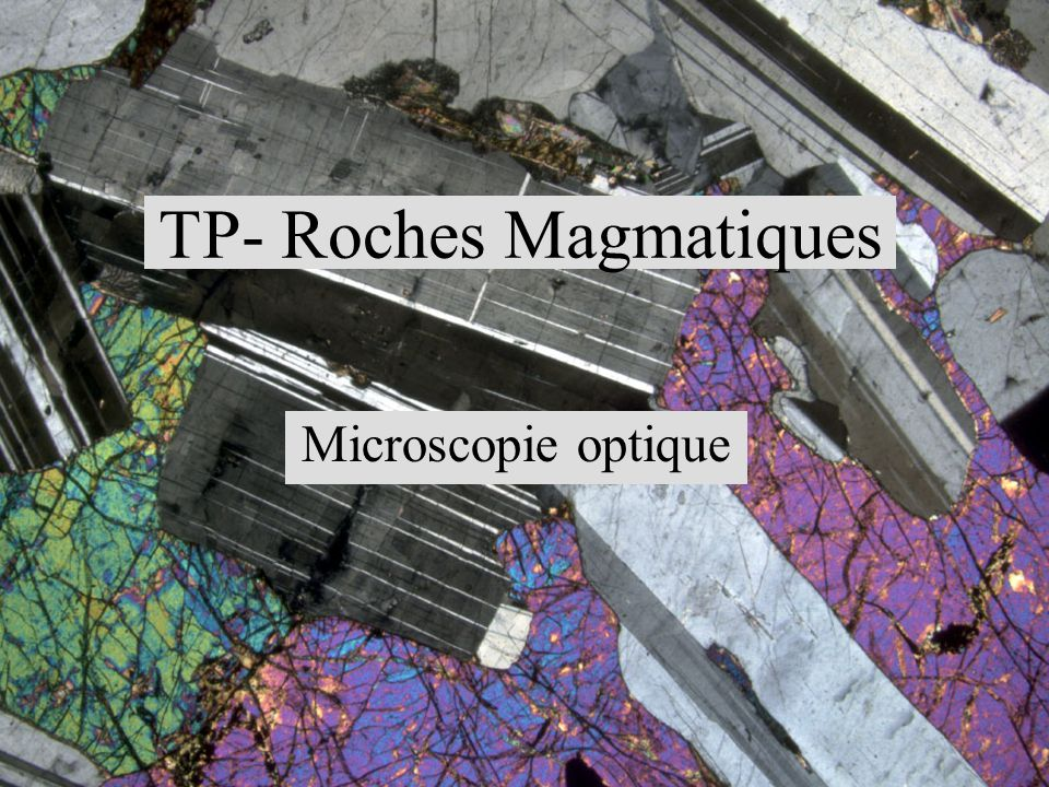 TP- Roches Magmatiques