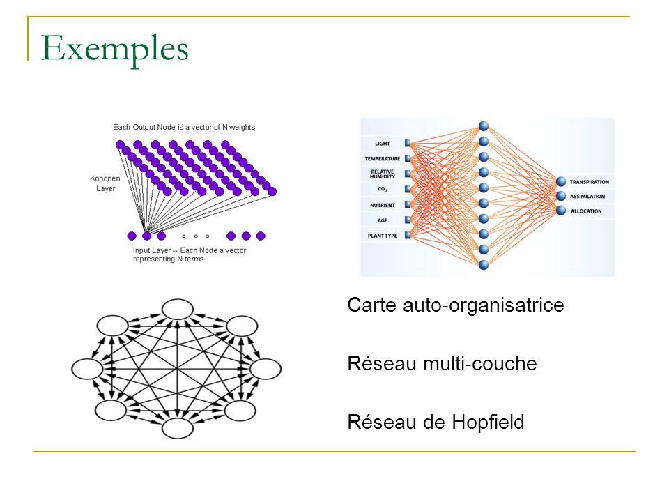 Exemples Carte auto-organisatrice Réseau multi-couche