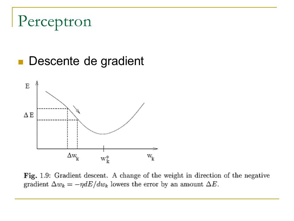 Perceptron Descente de gradient