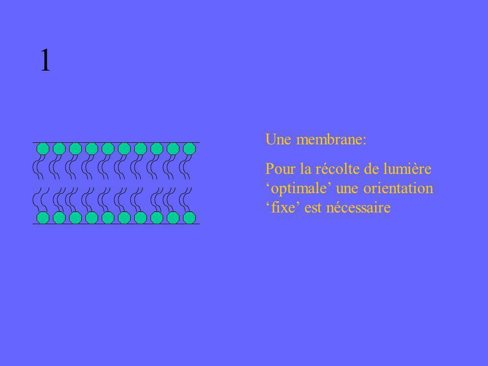 1 Une membrane: Pour la récolte de lumière 'optimale' une orientation 'fixe' est nécessaire