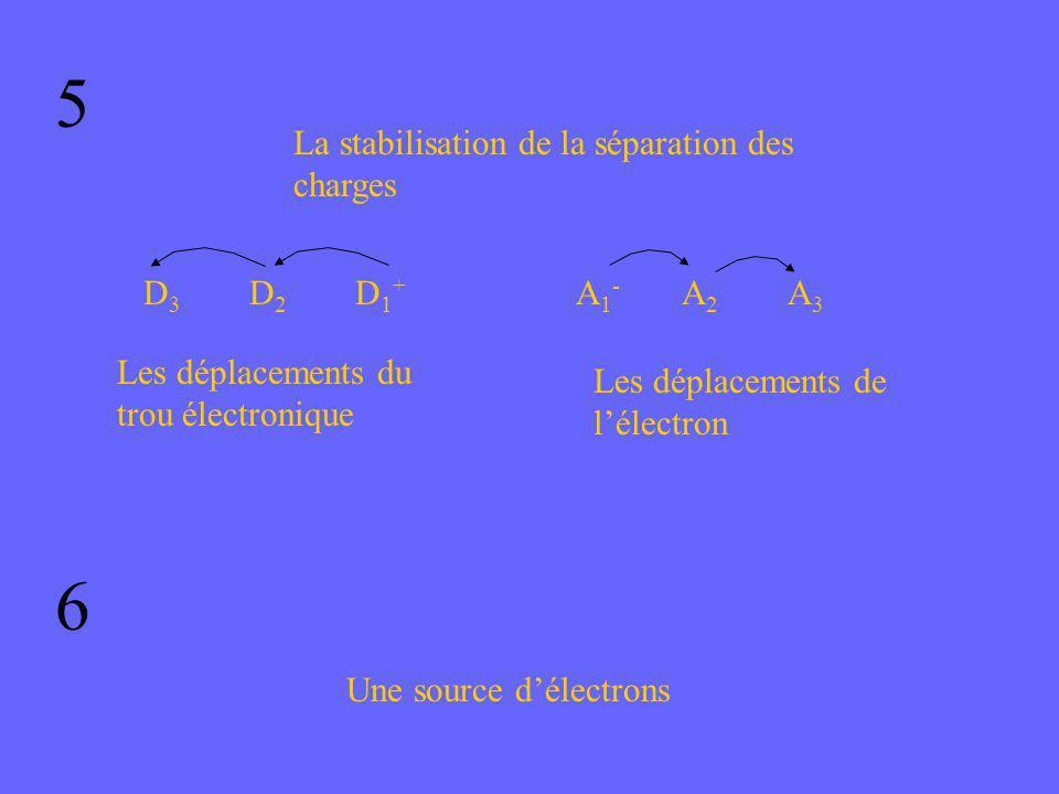 5 6 La stabilisation de la séparation des charges D3 D2 D1+ A1- A2 A3