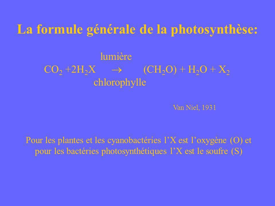 La formule générale de la photosynthèse: