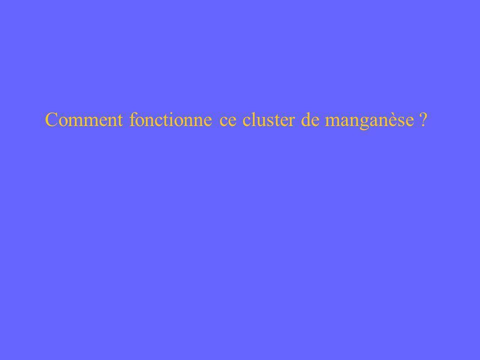 Comment fonctionne ce cluster de manganèse