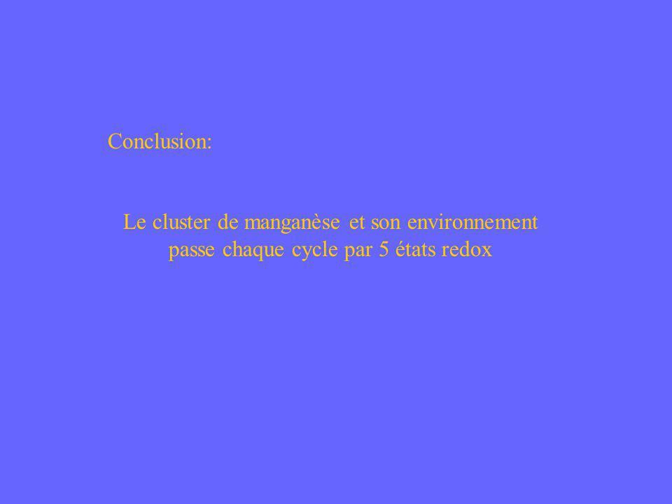 Conclusion: Le cluster de manganèse et son environnement passe chaque cycle par 5 états redox